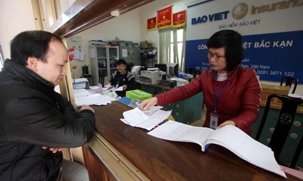 Insurance sector revenue grows 19 percent hinh anh 1