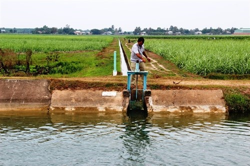 Da Nang seeks to prepare sufficient water for agriculture hinh anh 1