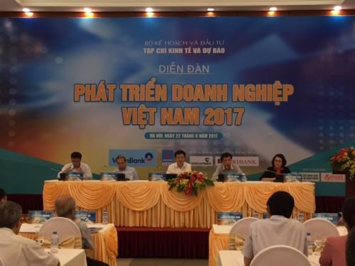 Vietnam Business Development Forum focuses on private sector growth hinh anh 1