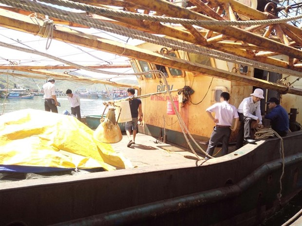 Firms told to fix substandard fishing boats hinh anh 1