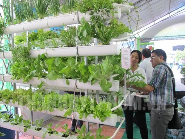 Seeds fair opens in HCM City hinh anh 1
