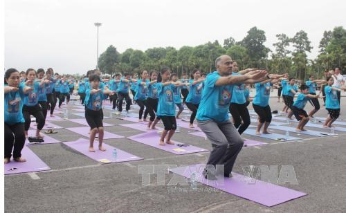Mass yoga demonstration attracts crowds in Vinh Phuc hinh anh 1