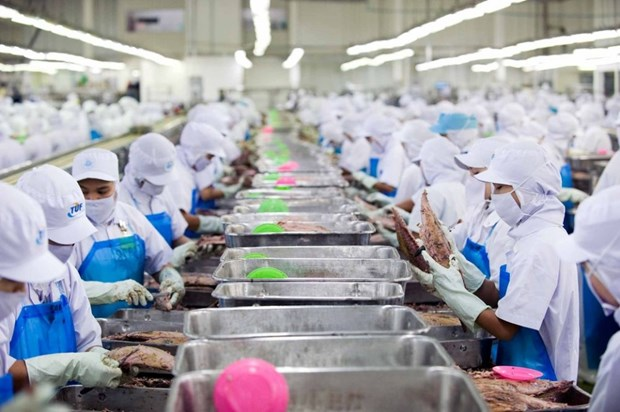 Thailand imposes stricter punishments on illegal migrant workers hinh anh 1
