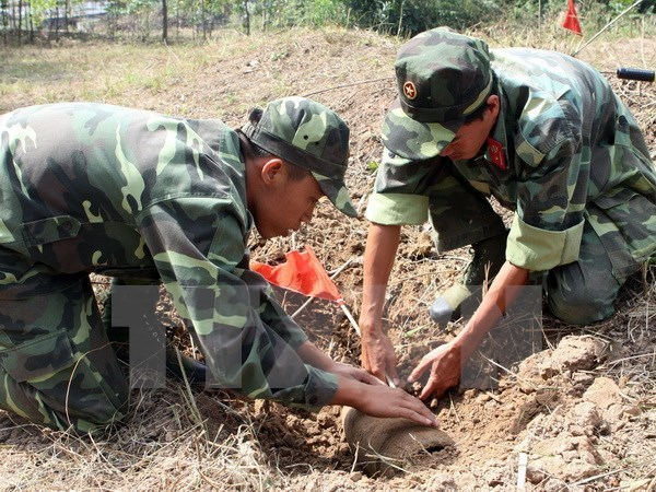 Vietnam's military engineers assessed for peacekeeping readiness hinh anh 1