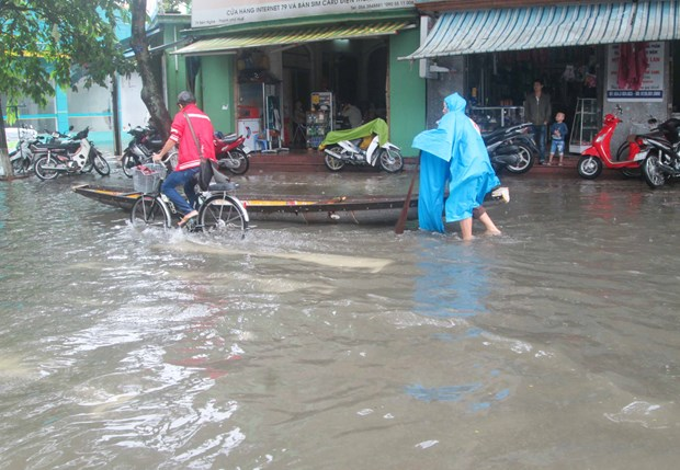German university aids climate change adaptation in Hue hinh anh 1