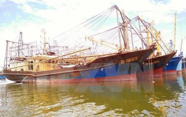 Shipbuilders asked to fix substandard steel fishing boats hinh anh 1