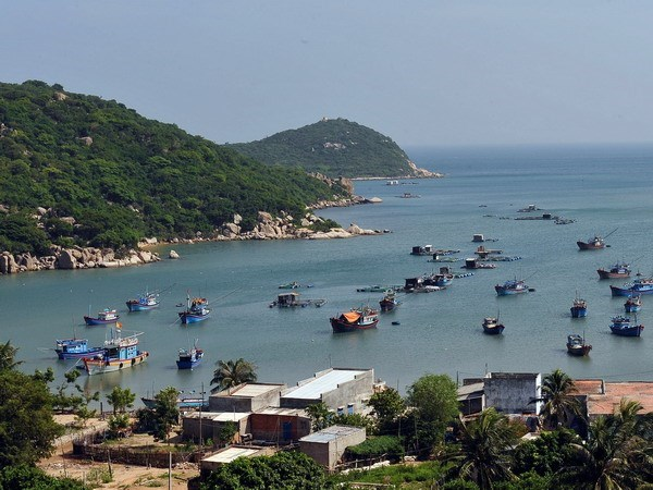 Ninh Thuan strives to become ideal tourism destination hinh anh 1