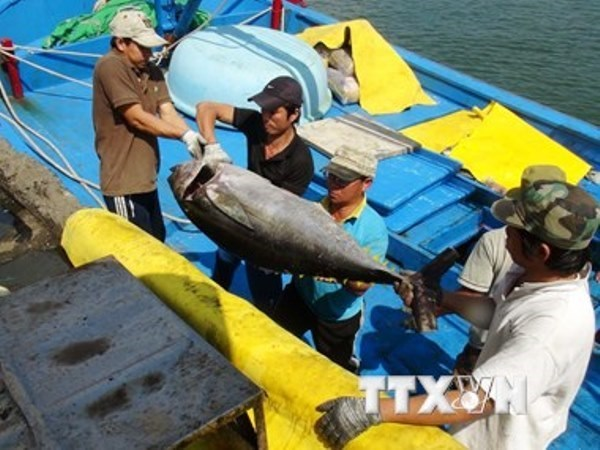 Agro-forestry-fishery exports hit 17.1 billion USD in six months hinh anh 1