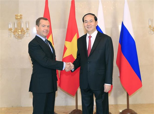 Vietnam treasures partnership with Russia: President hinh anh 1