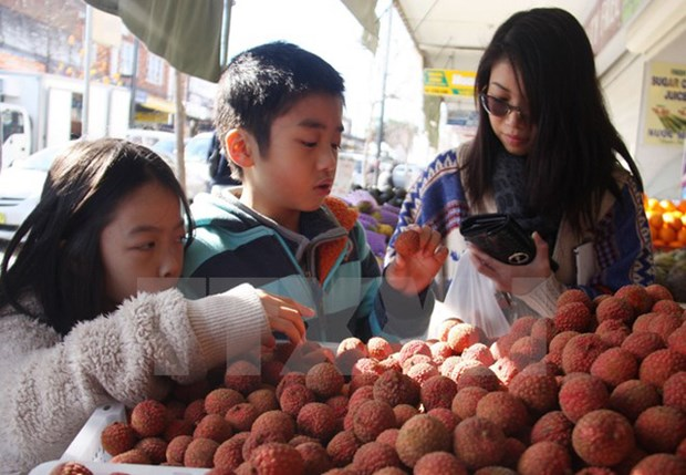 Vietnam earns 1.7 billion USD from vegetable, fruit exports hinh anh 1