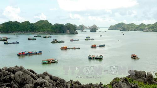 Hai Phong city welcomes 3 million tourists first half of 2017 hinh anh 1