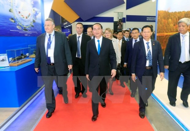 President Tran Dai Quang concludes official visit to Russia hinh anh 1
