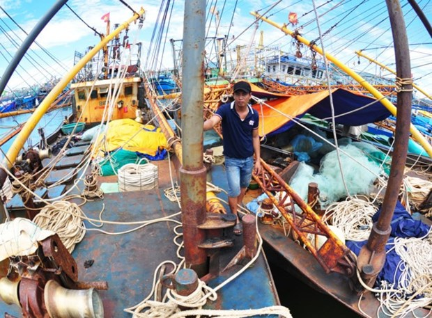 Prime Minister gets report on faulty fishing boats hinh anh 1
