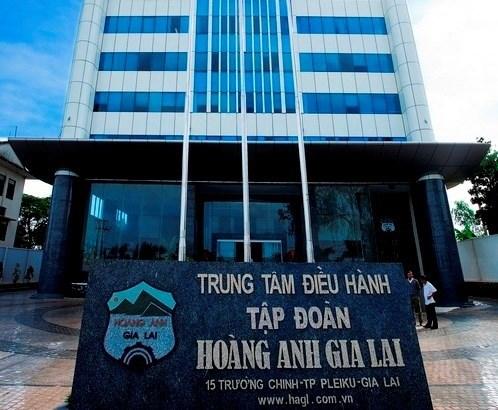 HAGL forecasts 1.6 percent revenue drop in 2017 hinh anh 1
