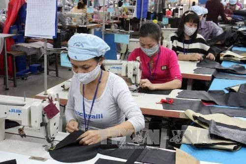 Vietnamese firms urged to find ways to step up EU exports hinh anh 1