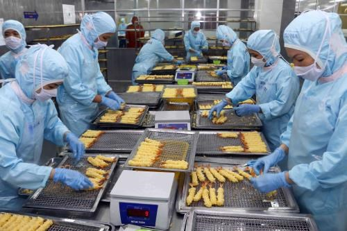 Control of seafood exports to Japan must keep strict: experts hinh anh 1