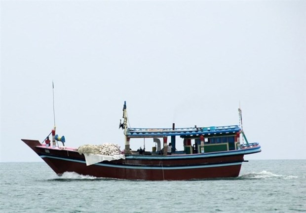 Malaysia applies severe measures for illegal foreign fishermen hinh anh 1