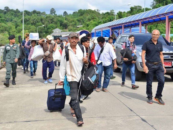 Thousands of foreign workers in Thailand return home hinh anh 1