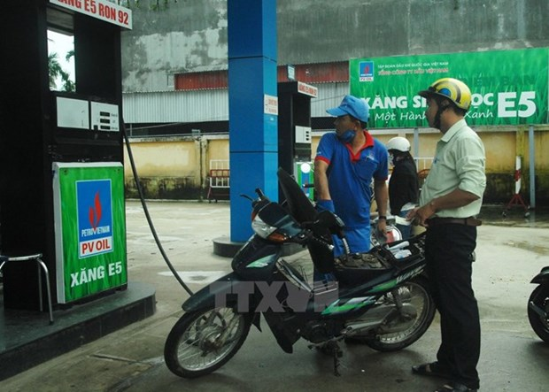 Industry ministry plans out transition to bio-fuel hinh anh 1