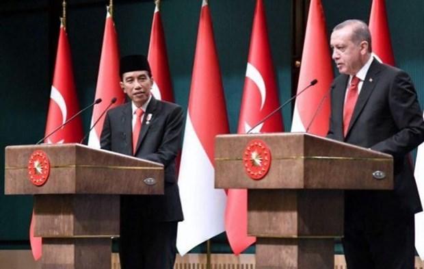 Indonesia, Turkey begin CEPA negotiations hinh anh 1
