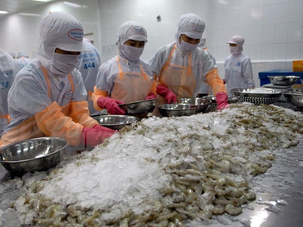 Shrimp export up nearly 16 pct in first half hinh anh 1
