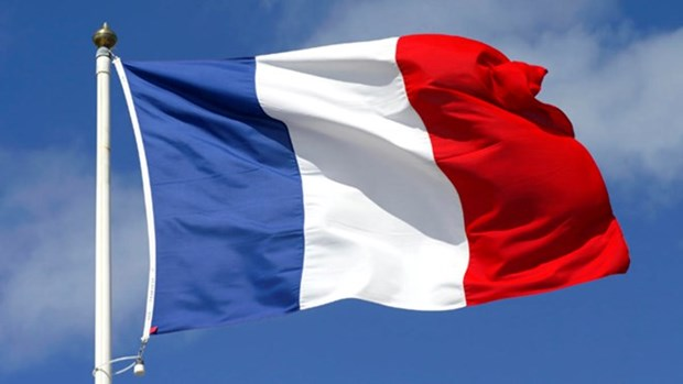 Vietnam congratulates France on 228th National Day hinh anh 1