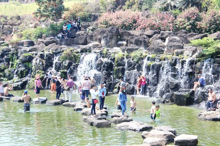 Dong Nai welcomes 2 million visitors in six months hinh anh 1
