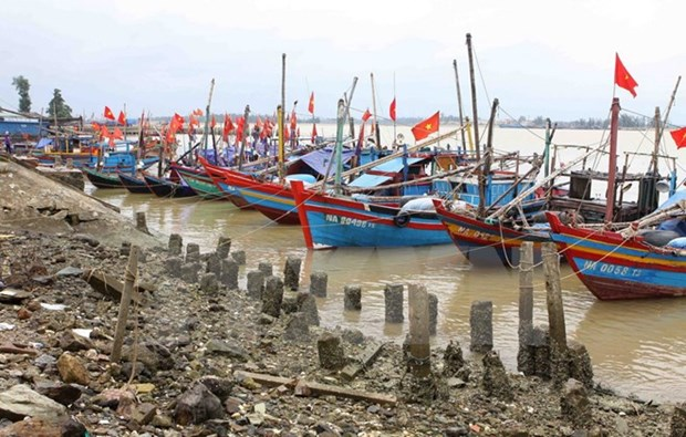 Localities urged to brace for upcoming storm hinh anh 1