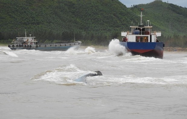 Deputy PM Trinh Dinh Dung directs response to storm Talas consequences hinh anh 1