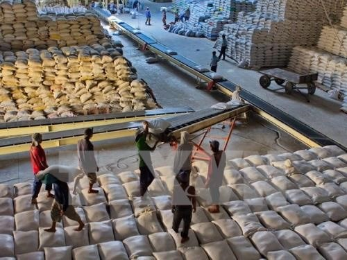 Private rice exporters can bid for Philippines shipments hinh anh 1