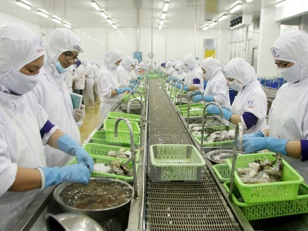 Ca Mau moves to expand shrimp export market hinh anh 1