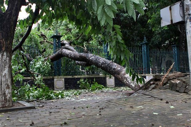 Storm Talas weakens after sweeping through Central Vietnam hinh anh 1