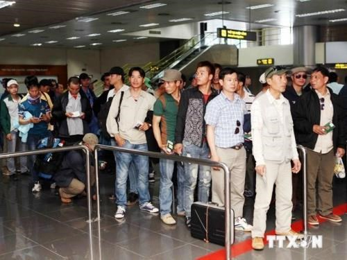 Vietnamese labourers in RoK receive legal consultation hinh anh 1