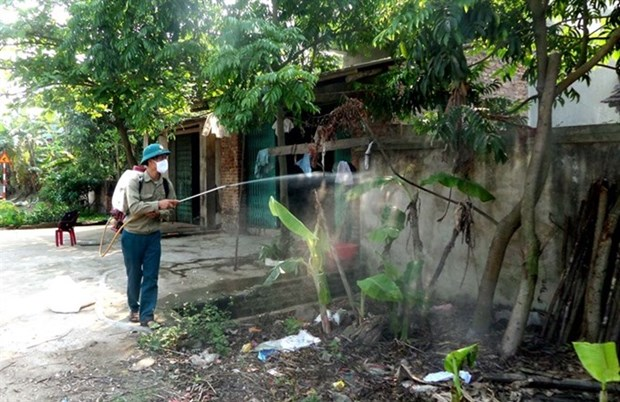 Ministry proposes measures against rainy season diseases hinh anh 1