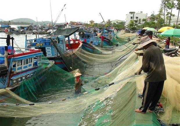 Khanh Hoa provides training for more than 4,200 fishermen hinh anh 1