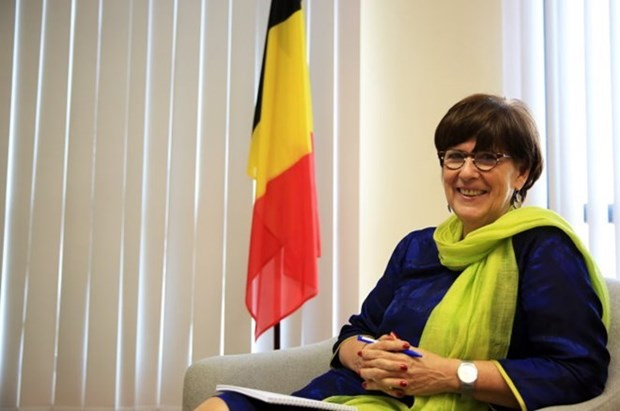 Friendship get-together marks Belgium's 186th National Day hinh anh 1