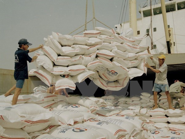 Vietnam exports 2.66 mln tonnes of rice in first half hinh anh 1