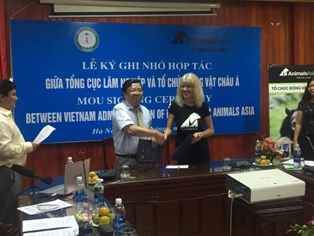 Vietnam commits to better bear preservation hinh anh 1