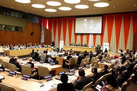 ECOSOC adopts statement on poverty alleviation hinh anh 1