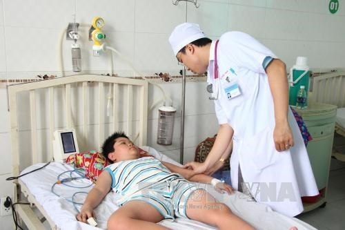 Dengue fever on the rise in Mekong Delta hinh anh 1