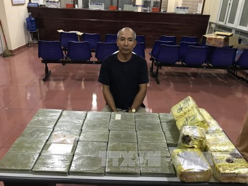 Hai Phong seizes biggest-ever drug volume hinh anh 1