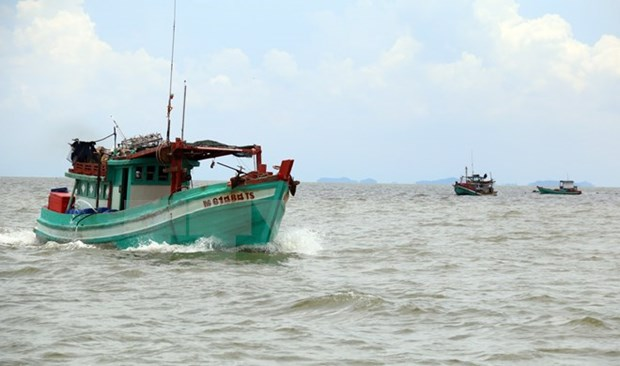 Vietnam strongly protests use of force against Vietnamese fishermen hinh anh 1