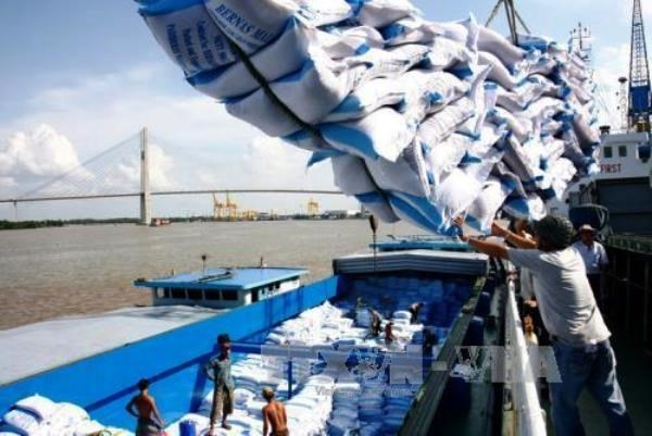 Agro-forestry-aquatic exports hit 20.45 billion USD in 7 months hinh anh 1
