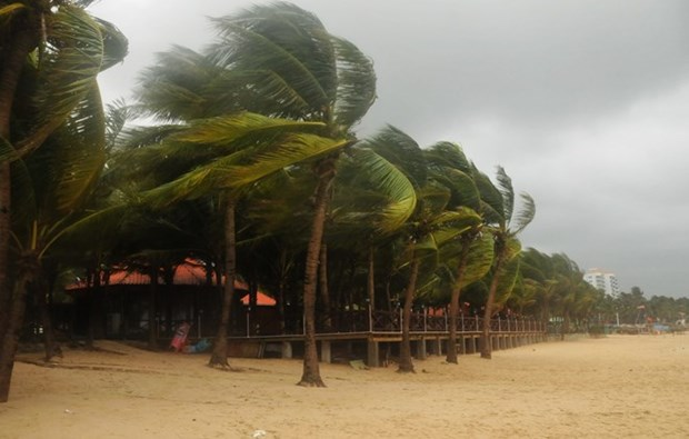 Tropical storm Sonca causes damage across central region hinh anh 1