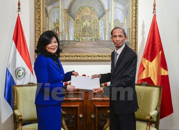 Vietnam wishes to further trade ties with Paraguay hinh anh 1