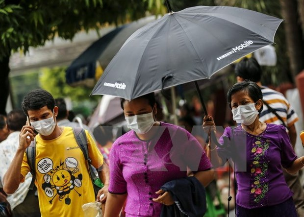 Bird flu, swine flu break out in Myanmar hinh anh 1