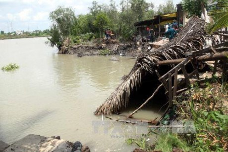 HCM City faces high risks of land erosion in rainy season hinh anh 1