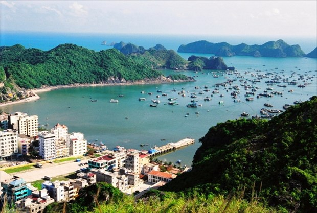 Cat Ba to be eco-smart island hinh anh 1