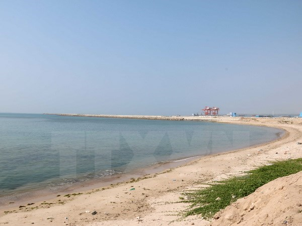 Scientists survey environment in sea area targeted for dumping hinh anh 1