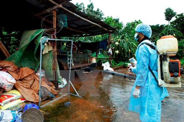 PM issues notice to prompt drastic measures against dengue hinh anh 1